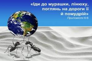 «Іди до мурашки, лінюху, поглянь на дороги її й помудрій» - Приповісті 6:6