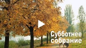 Вбудована мініатюра для  19:30 (киев. врем.) 17 октября 2020 г. Обмен опытами