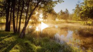 Embedded thumbnail for 20:00 (киев. врем.) 18 июля 2020 г. Часть 2, обсуждение. Трансляция субботнего богослужения